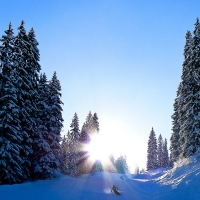 Danny Touw Photographs The White Stuff Portes du Soleil 36